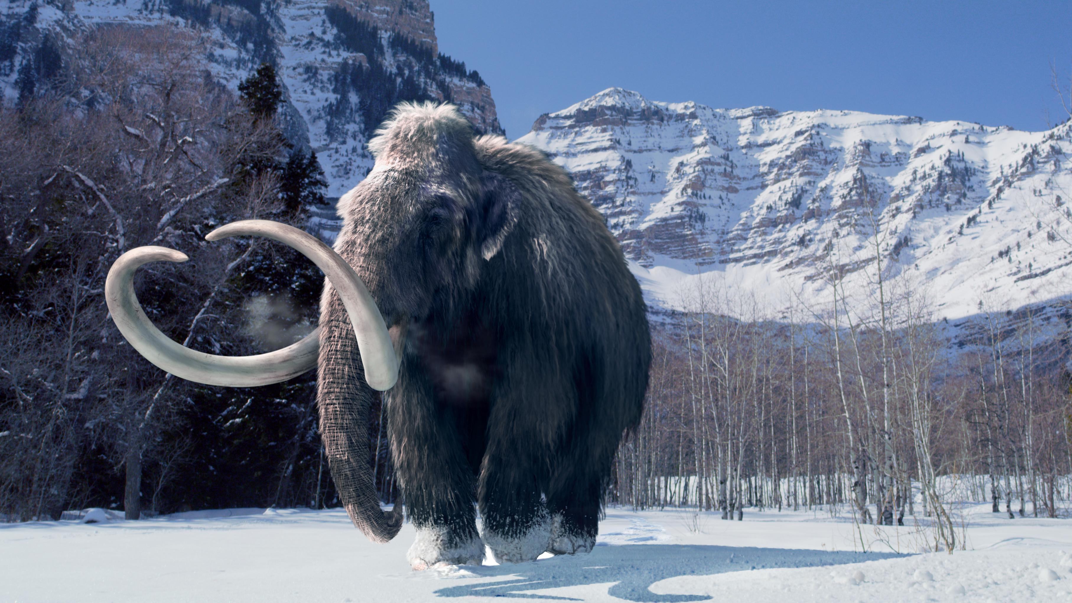 It's just a picture of Playful Ice Ages Pictures
