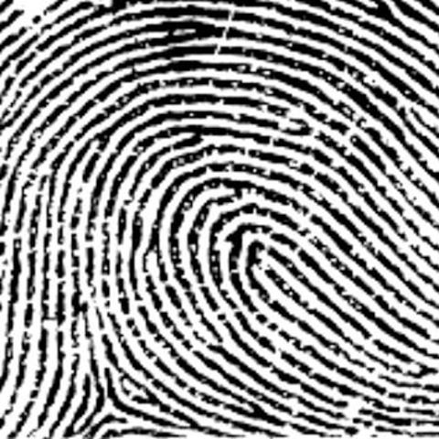 June STEAM Kit for Kids: Fingerprinting Kit