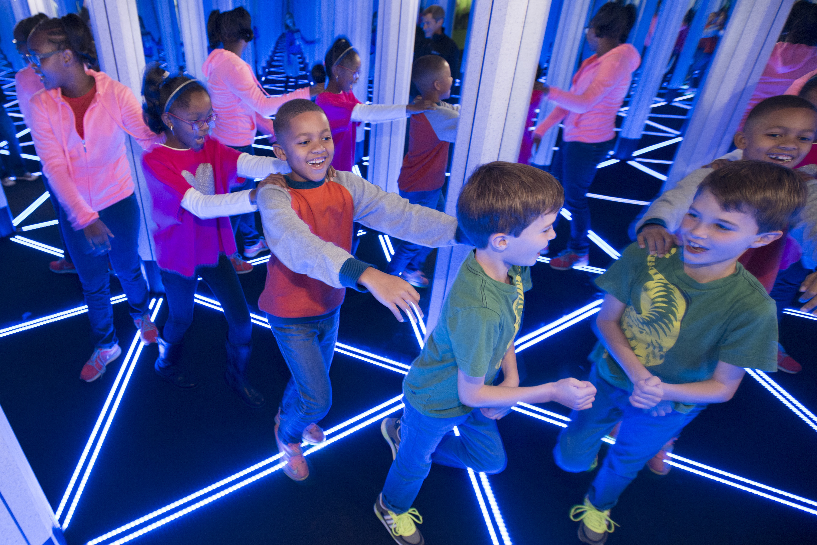 Numbers In Nature A Mirror Maze Museum Of Science And